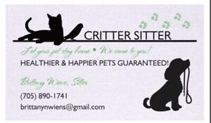 Pet sitter for Barrie and immediate area