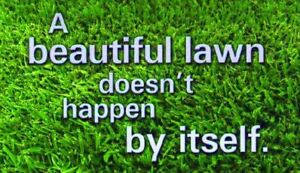 lawncare, aerating, de-thatching, roto-tilling and much more....