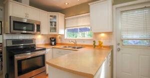 Pet Friendly Full House Rental in North Delta!