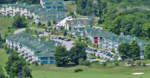 Blue mountain and Barrie horseshoe  valley carriadge hill resort