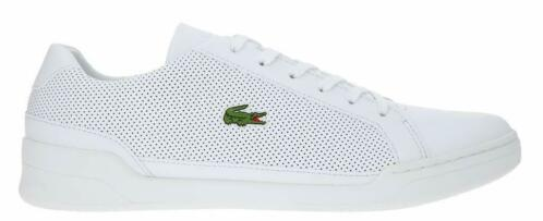 575e33f4486 ≥ Challenge 119 2 Wit Lacoste 25% KORTING! | 42 | Wit | SALE ...