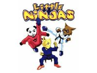 Little Ninjas - Kids Martial Arts