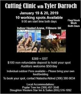 Cutting/ Cowhorse Clinic