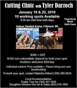 Cutting Clinic! All levels welcome