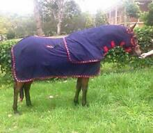 Show Rug sets rug hood and tail. Glen Martin Dungog Area Preview