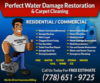 Save Your Money-Water Damage Service-Call Us Today