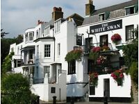 Experienced Chef required for busy riverside pub