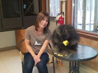 ANIMAL COMMUNICATION CLASSES - RED DEER - Sat. Feb 20 & Mar 19