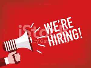 Now hiring for the christmas season Kingston Kingston Area image 1