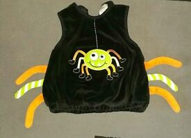 9-12 month Halloween Spider Padded Top