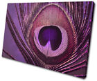 Peacock Abstract Decorative Posters & Prints