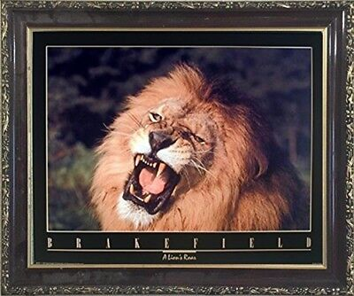 (African Lion King Roar Close-up Wild Animal Wall Decor Mahogany Framed Picture)