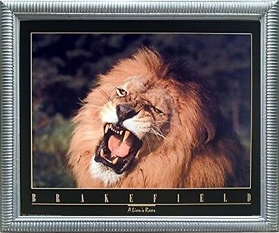 (African Lion King Roar Close-up Wild Animal Wall Art Decor Silver Framed Picture)