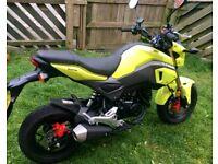 Honda msx 125cc £1800 barging!!!!!