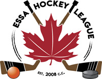 ALLISTON MENS INDOOR BALL HOCKEY LEAGUE LOOKING FOR PLAYERS