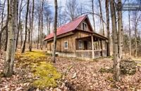Tiny Cabin/Tiny House/Man Cave/Guest House