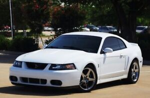 LOOKING FOR: 2003-2004 Ford Mustang SVT Cobra