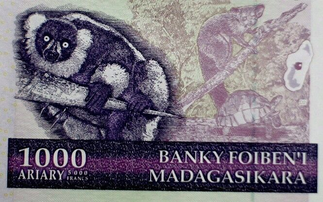 LEMUR ON MONEY MADAGASCAR 2004 BANKNOTE 1000 ARIARY / 500 FRANC  Uncirculated