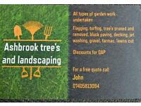 Ashbrook tree's and landscaping