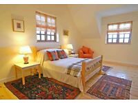 Amazing Large Room For Single Occupancy