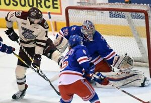 KITCHENER RANGERS VS PETERBOROUGH PETES Sun Nov 19th