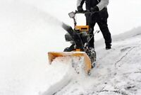 Snow Blowing Service - $30
