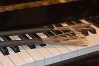 ♫ COURS DE PIANO, ÉVEIL MUSICAL, COACHING VOCAL ♫ à AHUNTSIC