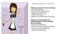Fast and efficent 20$ a hr per cleaner special.. Book today