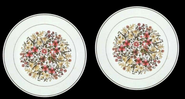 "2 Corelle INDIAN SUMMER 10-1/4"" Dinner Plates Brown Band Retired Fall Flowers"