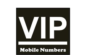 VIP BEST SELECTION 416 647 905 PHONE NUMBERS FOR BUSINESS