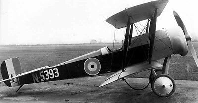 WWI 1/3 Scale Bristol Scout Giant Scale RC Model AIrplane