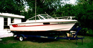 22ft 1981 Starcraft Boat Windsor Region Ontario image 3