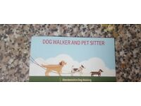 Dog Walker and Pet sitter Aberdeen South and Shire