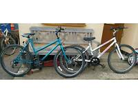 Ladies mountain bikes for sale