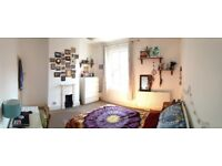 Spacious double room to rent in shared house in leafy Sheffield suburb