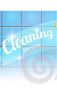 Cleaner looking for a client..