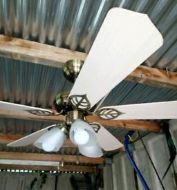 Rotating Ceiling Fan Light