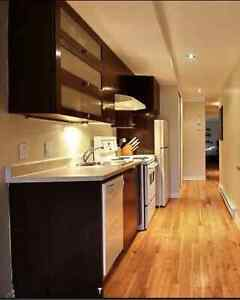 Beautiful fully furnished 1 bedroom in Villa Maria