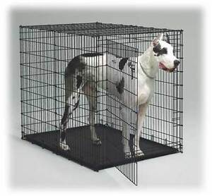 2 Ex- Large Dog Crates For Sale $150.00 Each