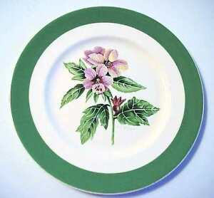 URGENT Wanted to buy a lost family dish set