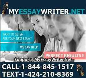Essay Writing   Find Tutors or Advertise Language Lessons in     health english essay College budget cuts essay Kijiji Best custom essay  writing websites Festivalul Interna ional