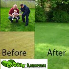 Lawn care (franchise) be your own boss, 100 repeat customers provided