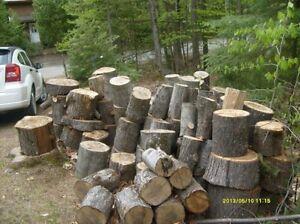 Je cherche bois de chauffage, ou des troncs coupés