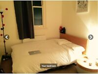 Double Room in a Stunning Flat in Chelsea