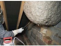Pest Control - WASP NEST REMOVAL...£40 with no hidden charge. 7days a week