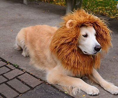 Pet Costume Lion Mane Wig w Ears for Large Dog Halloween Clothe Fancy Dress up