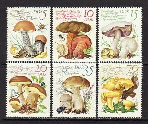 Germany DDR 2137-42 MNH 1980 Edible Mushrooms Full Set Of 6 Very Fine - $1.85