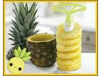 Pinapple corer