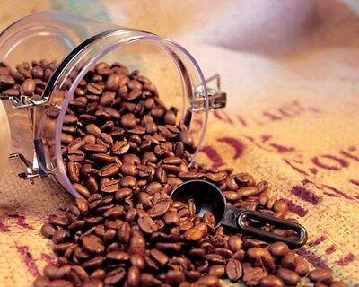 lbs El Salvador SHG Santa Maria RFA Coffee Beans Medium Roast Fresh ...