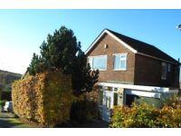 3 bedroom house in Ferndale Road, Coal Aston, S18